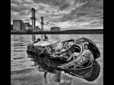 power-disposal-by-scott-wilson