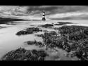no-passage-landward-by-chris-newham
