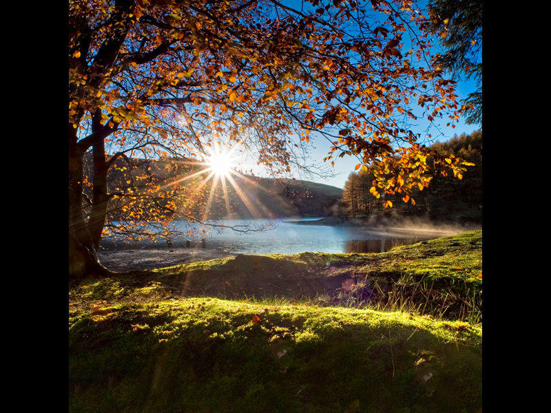 MORNING AT DERWENT RESERVOIR by Michal Tekel