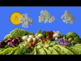 ELDERFLOWER FOODSCAPE by Lester Woodward